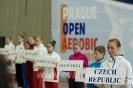 Prague Open 2013
